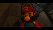 Mario SAW 006