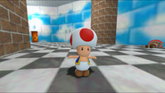 Mario And The T-Pose Virus 050