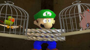The parrot and the chicken torturing Luigi
