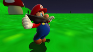 Stupid Mario 3D World 006