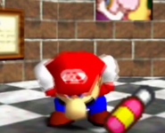 MARIO AND HIS POOOIRS