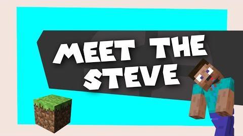 SM64: Meet the Steve