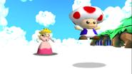 Stupid Mario 3D World 208