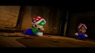 Mario SAW 012
