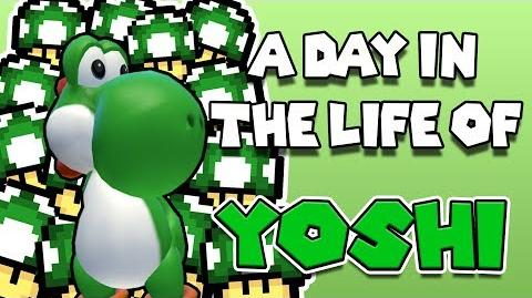 A day in the life of... YOSHI