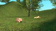 Mario Gets Stuck On An Island 174