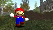 Mario's Big Chungus Hunt 133