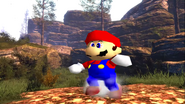 Mario's Big Chungus Hunt 039
