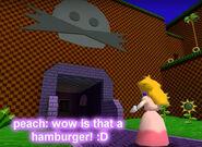 PeachHamburger