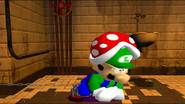 Mario SAW 023