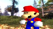 Mario's Big Chungus Hunt 049