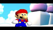 Stupid Mario 3D World 251