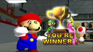 Stupid Mario 3D World 331