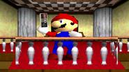 Mario The Ultimate Gamer 135