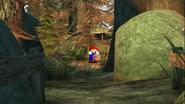 Mario's Big Chungus Hunt 002