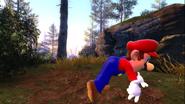 Mario's Big Chungus Hunt 094