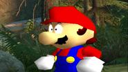 Mario's Big Chungus Hunt 017