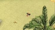 Mario Gets Stuck On An Island 263