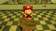 Mario's Big Chungus Hunt 172