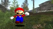 Mario's Big Chungus Hunt 134
