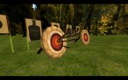 Meggy's arrows