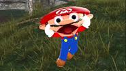 Mario's Big Chungus Hunt 139