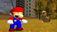 Mario's Big Chungus Hunt 209