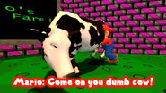 Come on you dumb cow!