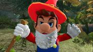 Mario's Big Chungus Hunt 024