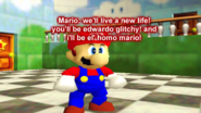 Homo Mario