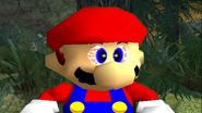 Mario's Big Chungus Hunt 029