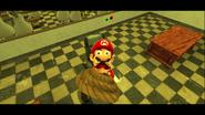 Mario's Big Chungus Hunt 175