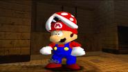 Mario SAW 008