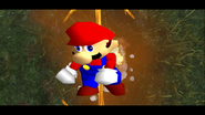 Mario's Big Chungus Hunt 159
