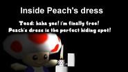 Super Mario 64 Meet the Toad 1-25 screenshot