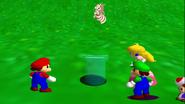 Stupid Mario 3D World 032
