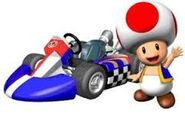 Toad mkw