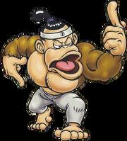 Kong Fu DKCTV.png