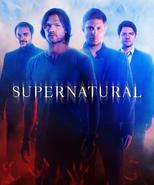Supernatural Season 10 Poster HD