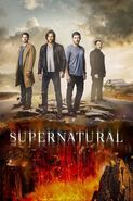 S s12 poster