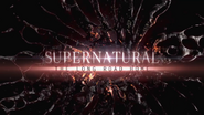 SPN The Long Road Home