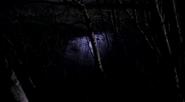 Vlcsnap-2012-05-19-23h23m03s74