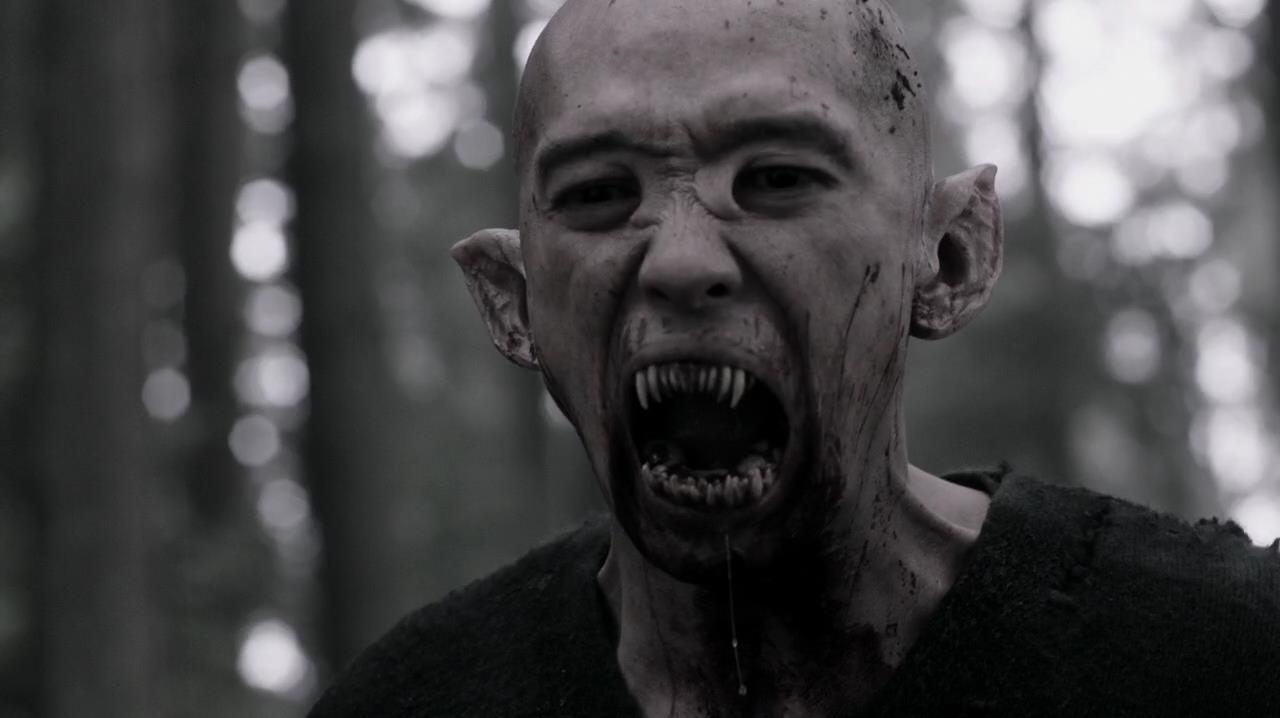 Vampires (Apocalypse World)