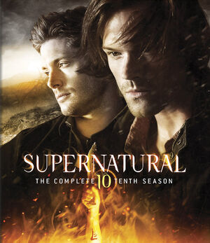 Supernatural Season 10 BRCover.jpg