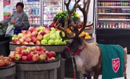 S03E07-Reindeer in produce