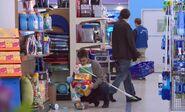 S03E16-Customer drops items