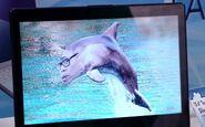 S01E10-Mateo dolphin