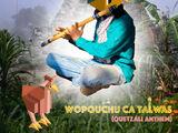 Polytopia Music