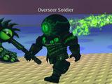 Overseer Soldiers