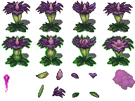 plant_corpseflower.png